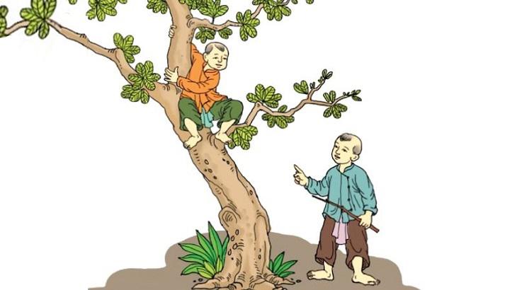 Phong tục khảo cây vào giờ Ngọ