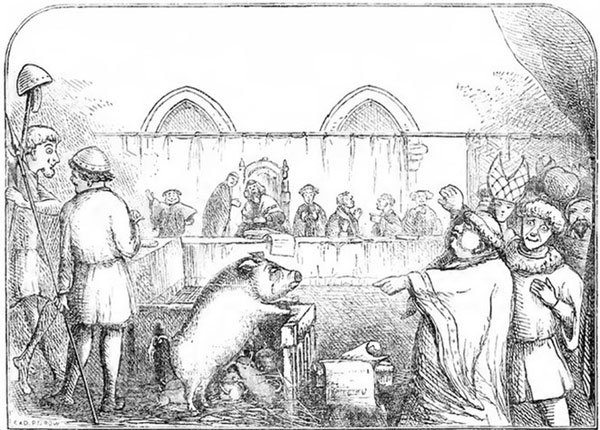 Động vật đã được đưa ra xét xử vào thời Trung Cổ