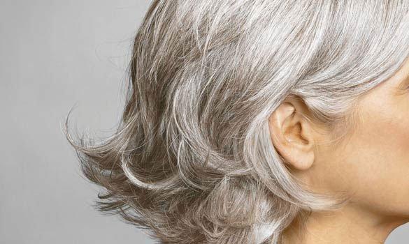 Không có lý thuyết nào chứng minh tóc có thể đột nhiên bạc trắng sau 1 đêm.